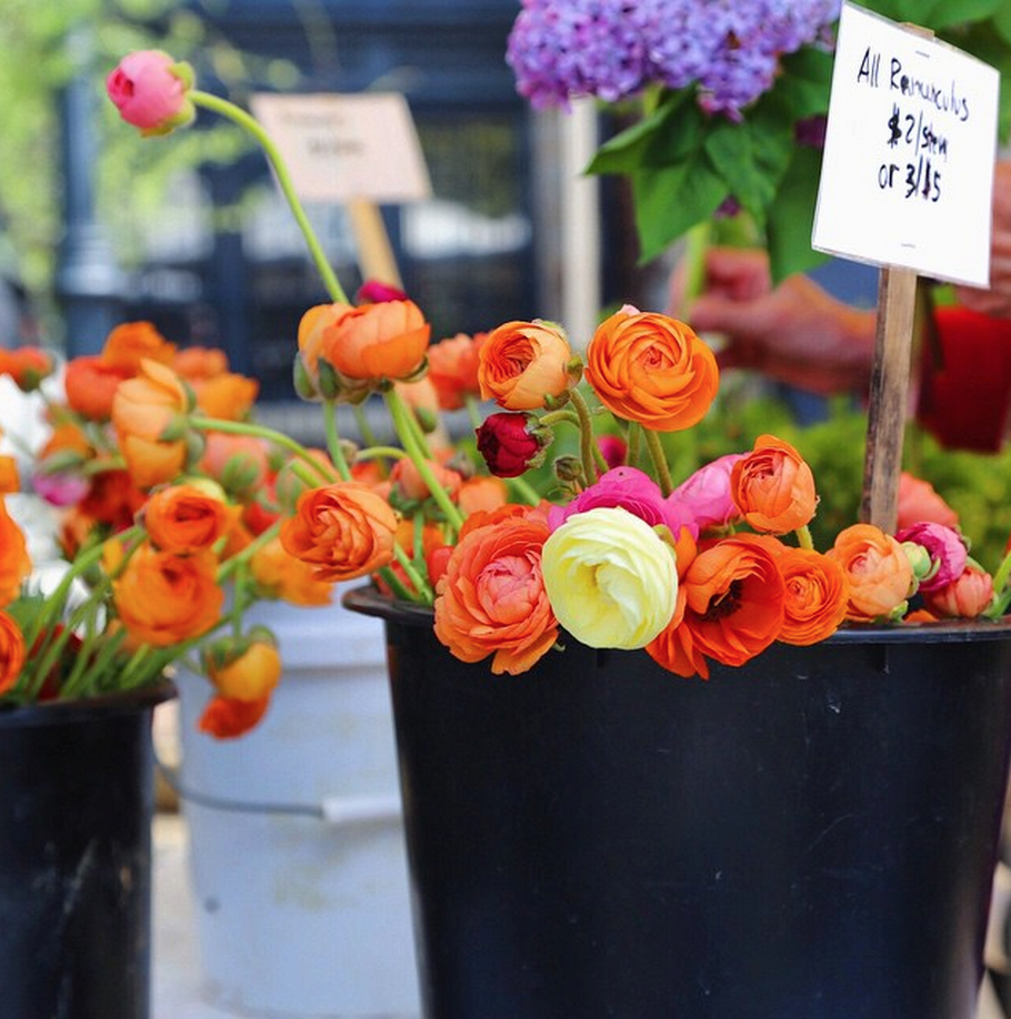 Washington, DC Spring Farmers Market Must Haves // inmybowl.com